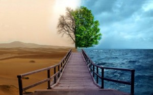 photo-manipulation-hd-water-desert-tree-wallpaper